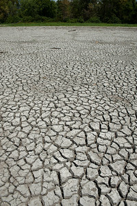 Cracked and dried ground of a wetland damaged by an extended drought in the midwest United States