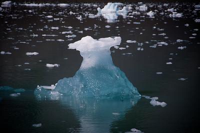 Glacier ice floating in Ressurection Bay in Kenai Fjords Alaska
