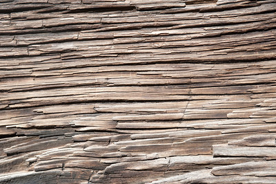 Wood grain macro for use as a background image