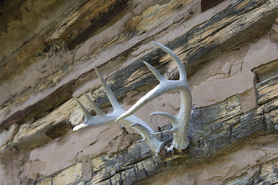 A set of deer antlers hanging on the side of a rustic cabin
