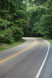 A highway winds through the woods in Tennessee