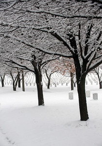Jefferson Barracks National Cemetery near St. Louis following winter snow storm