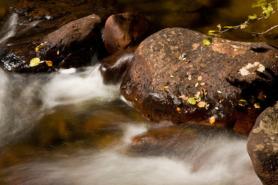 Water moves along a mountain stream in Rocky Mountain National Park