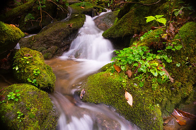 Slow shutter image of mountain stream in the summer with bright green moss
