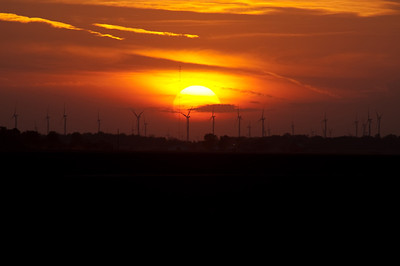 Wind turbines are silhouetted by the setting sun