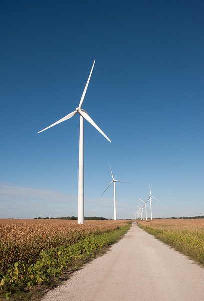 A gravel raod leads past wind turbines and a corn field in rural Indiana