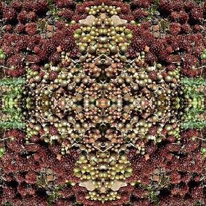 Seamless fractal2