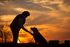 dog and owner at sunset