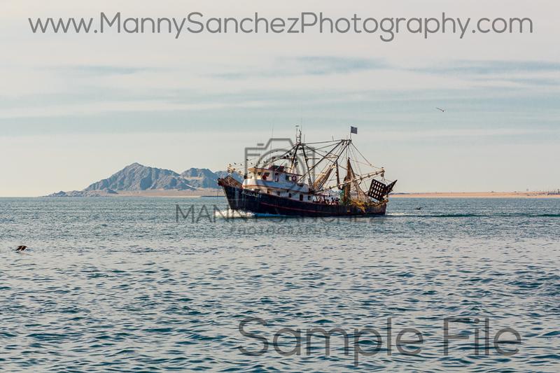 IMG_7751 Boat2
