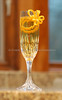 Champagne Flute Orange Twist 043-2009-10-29
