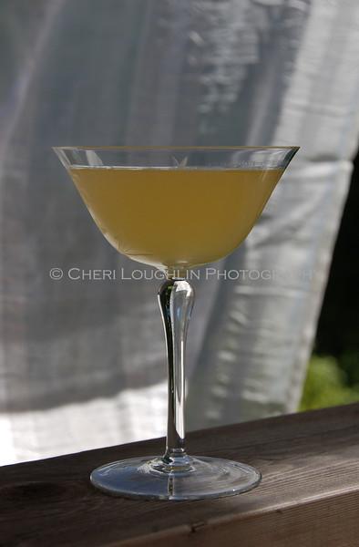 Summer Cocktail 028-2010-06-07
