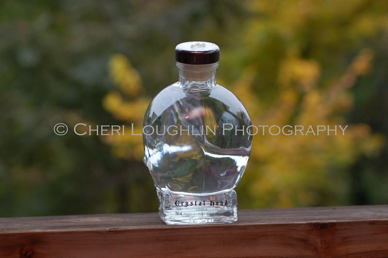 Crystal Head Vodka 020
