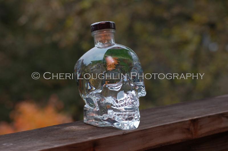 Crystal Head Vodka 014