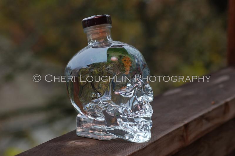 Crystal Head Vodka 015