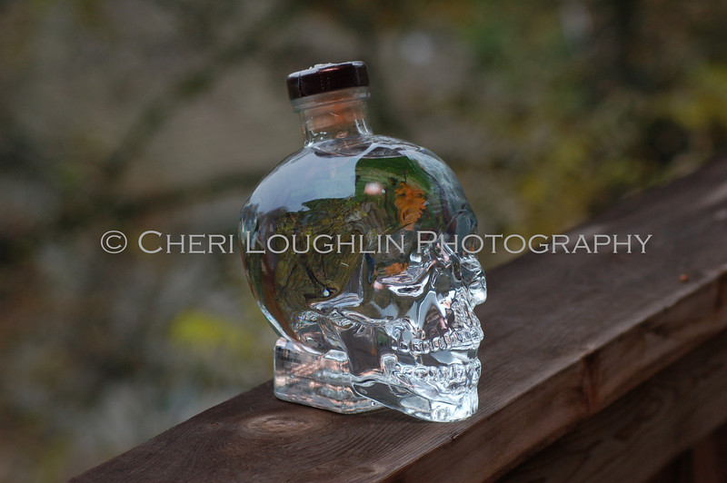 Crystal Head Vodka 016