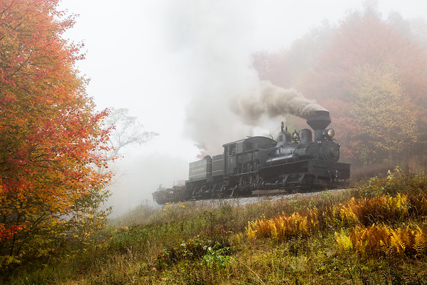 Cass Scenic Railroad Shay no. 5 pulls a string of empty log cars around Gum Curve.