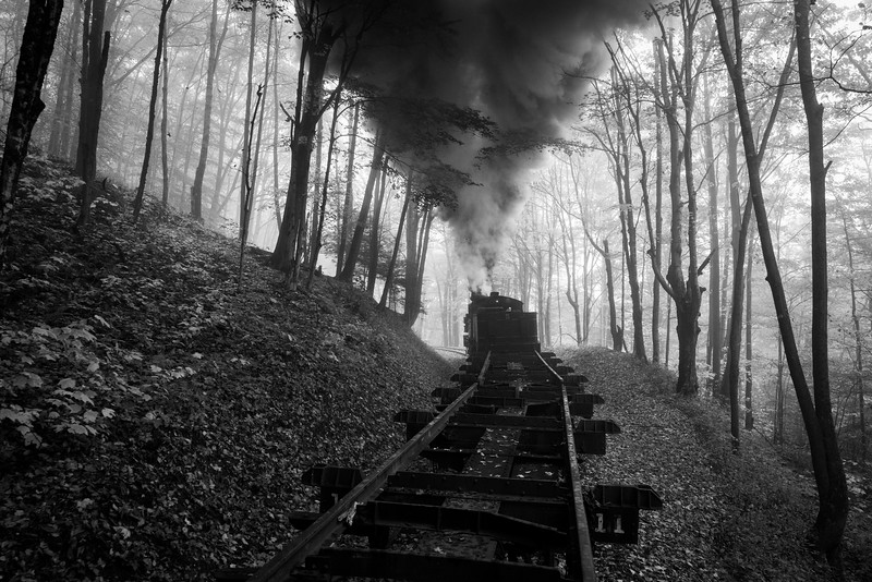 The view from the rear of a log train as Shay no. 5 approaches the first switchback on the Cass Scenic Railroad.