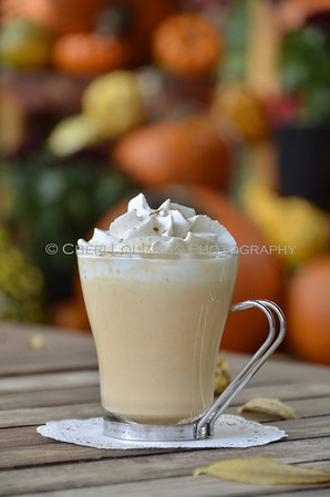Pumpkin Pie White Hot Chocolate 134