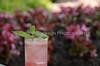 Raspberry Watermelon Mojito 021