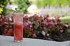 Raspberry Watermelon Mojito 019