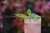Raspberry Watermelon Mojito 023