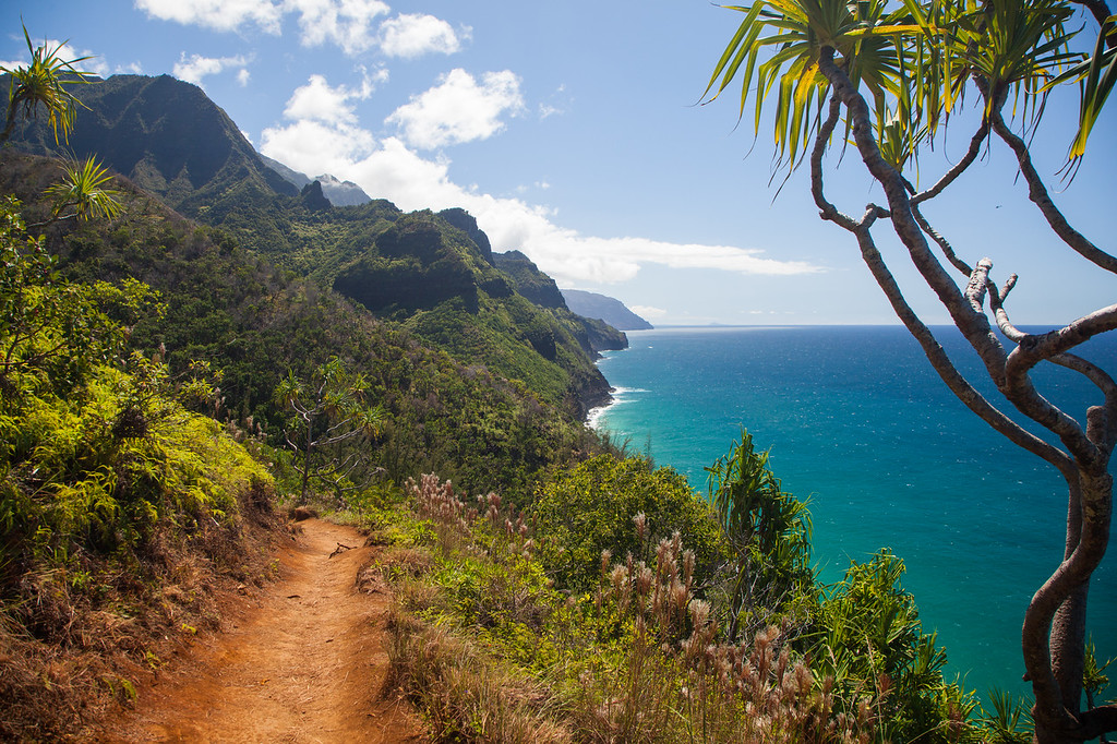 Along the famous Na Pali coast line of Kauai lie some of the most breathtaking views, rugged terrain, and solitary landscapes found anywhere.  This portion of the trail near mile two is one such place and marks the first descent into a beautiful valley, beach of nearby waterfall.