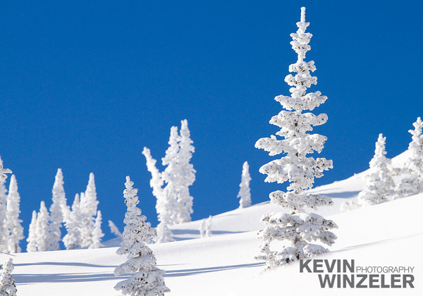 SkiingPhotography_WinterLifestyle_Skiing-Snowbasin-Utah-8021