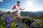 Ultra Run Speedgoat 50k : ultra run, speedboat 50k, snowbird, utah, trail running