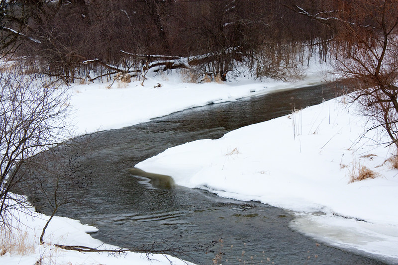 The creek in Lake Barrington,Illinois that refuses to freeze.