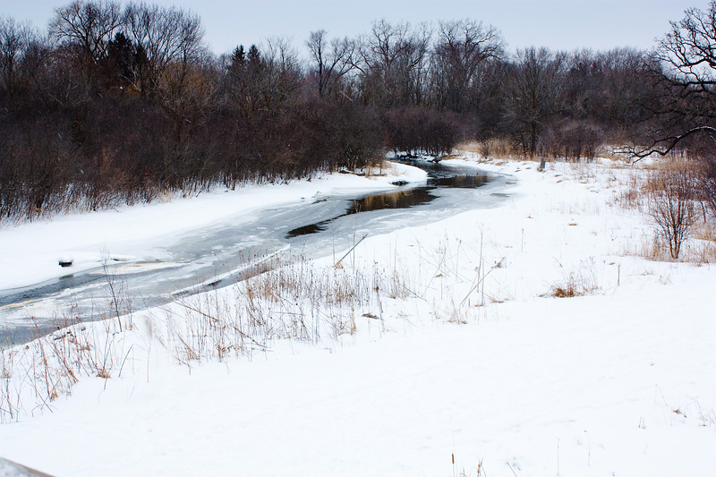 Snow lined stream that refuses to freeze. Surrounded by a remote wooded area.