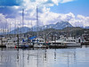 Charter boats and fishing are a big part of life in Alaska as we see here in this scenic harbor view.