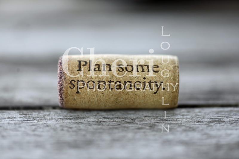 Spontaneity Wine Cork 099