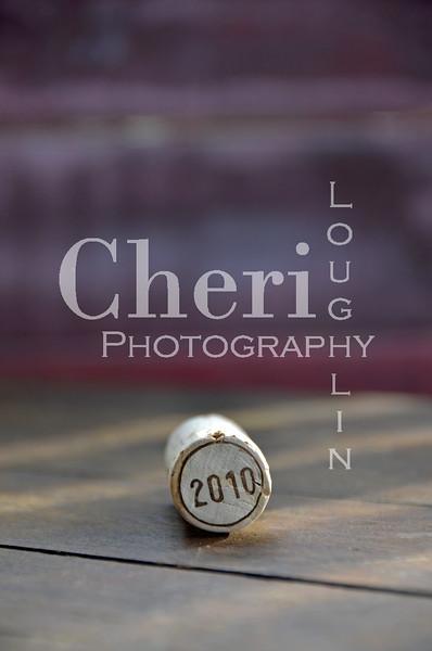 2010 Wine Cork 394