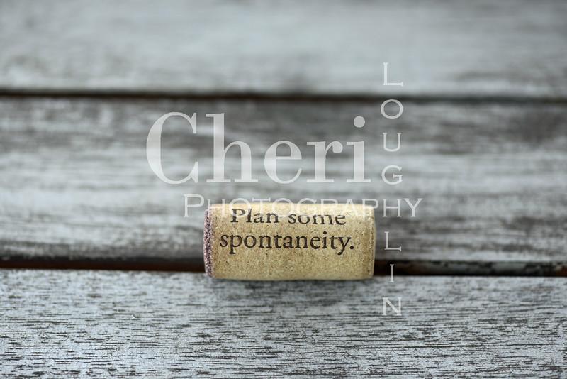 Spontaneity Wine Cork 078