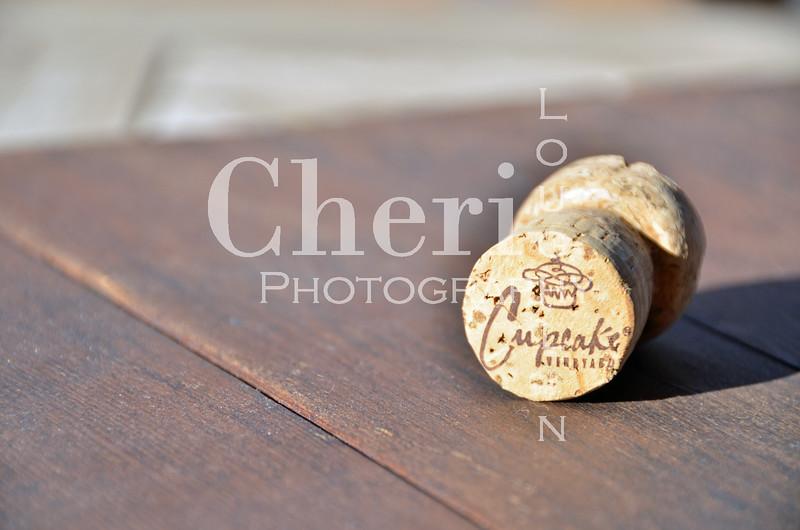 Cupcake Champagne Cork 062