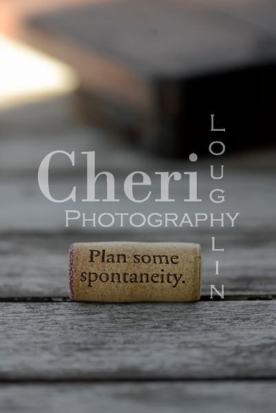Spontaneity Wine Cork 083