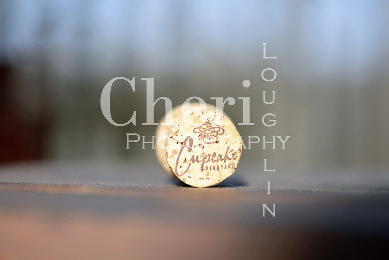 Cupcake Champagne Cork 043