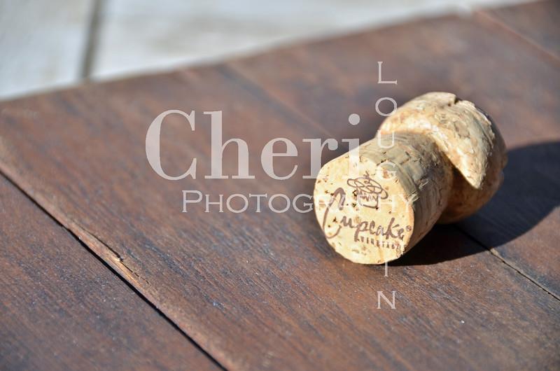 Cupcake Champagne Cork 052