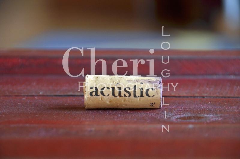 Acustic Wine Cork 090