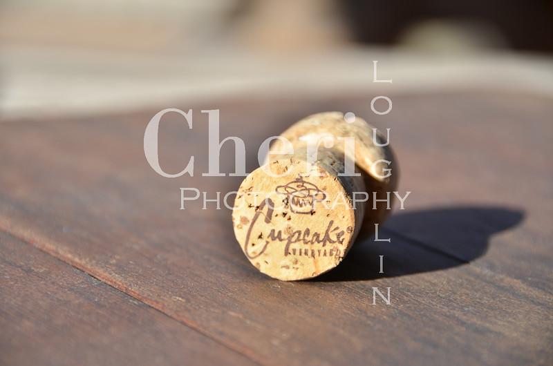 Cupcake Champagne Cork 058