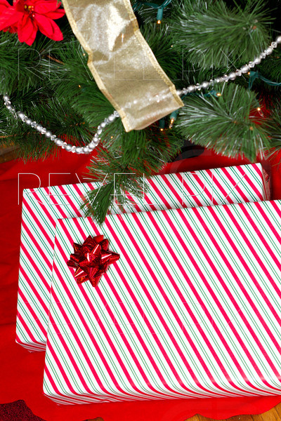 a few gifts are under a christmas tree.