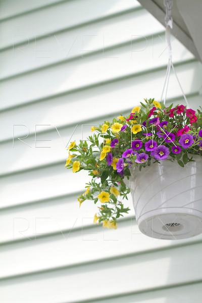 vertical shot of a hanging flower basket against a vinyl siding backdrop.