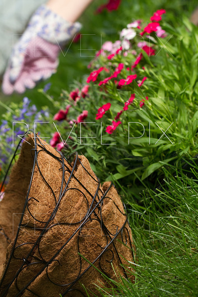3 stacked wire hanging baskets in foreground with flowers and gardeners hand in background out of focus.