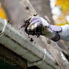 a close up shot of a person cleaning the gutter.shallow depth of field