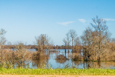 Mississippi River Flood 1-7-2016 View of back water alone Hwy 15 N Control Structure 2