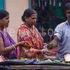 7-2015-leighton-india-2263