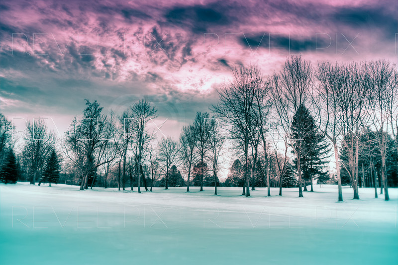 an enhanced HDR shot of a winter scene. bare trees with snow on the ground.