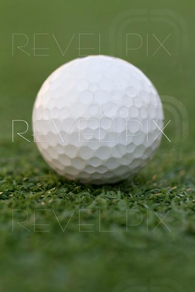 a golf ball centered on a putting green. shallow depth of field.