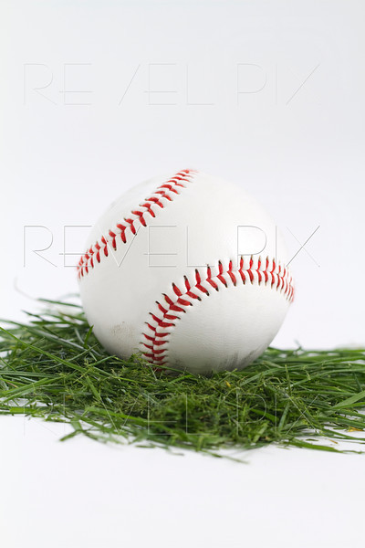 vertical shot of a baseball on cut grass in white studio