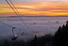 Tram Fog Sunrise